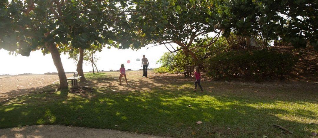 Dart-Family-Park