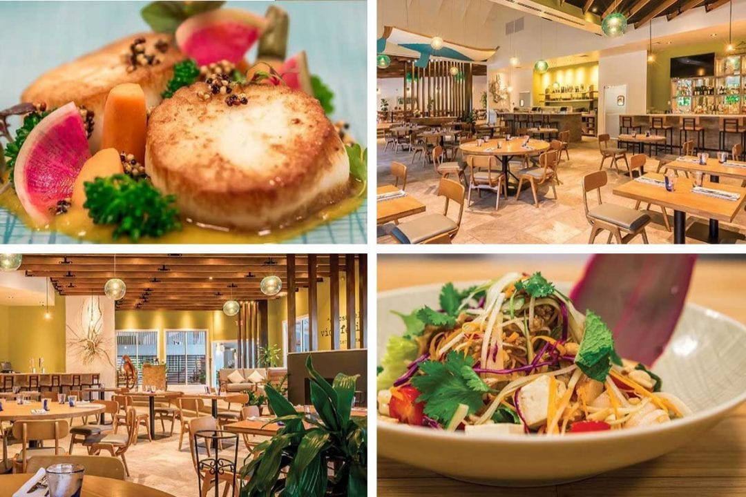 Eating House 1503 Cayman Islands