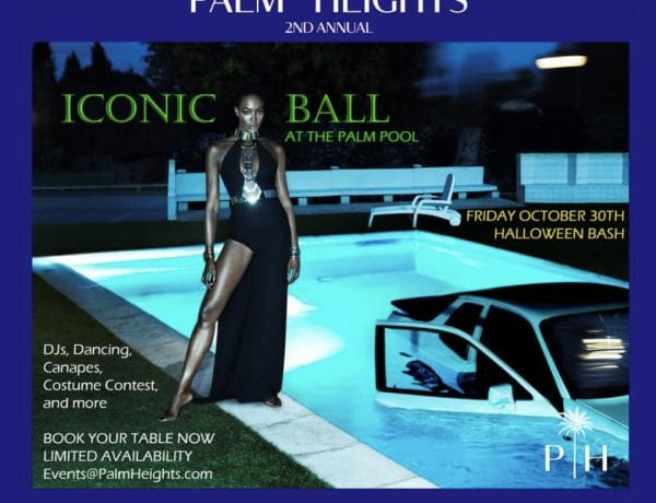 Palm Heights Iconic Costume Ball